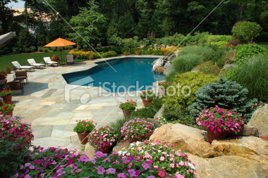 swimming-pool-with-pretty-gardens